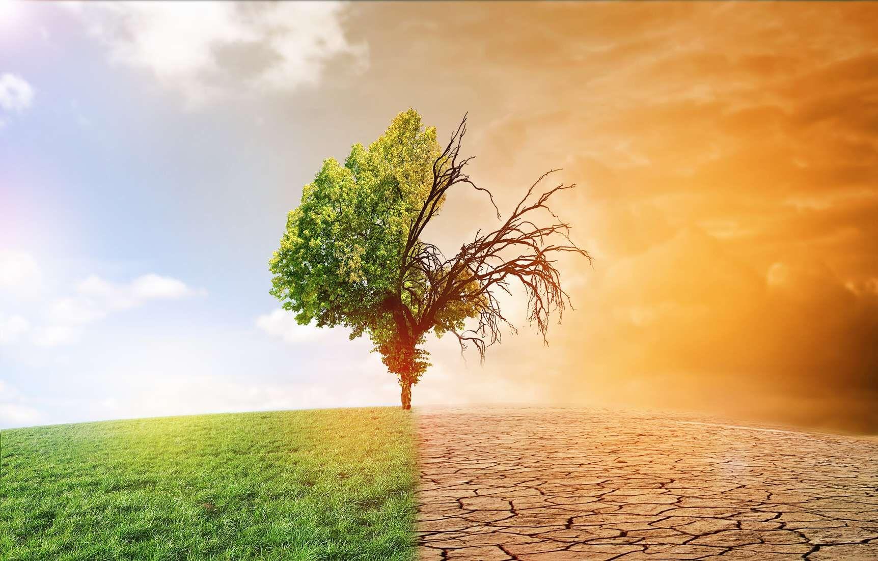 Prenons conscience que, en définitive, la Covid-19 constitue certes un énorme défi pour l'humanité, mais il n'est rien à côté des deux autres : se nourrir à 10 milliards sur une Planète aux ressources limitées, affronter et réduire le réchauffement climatique.