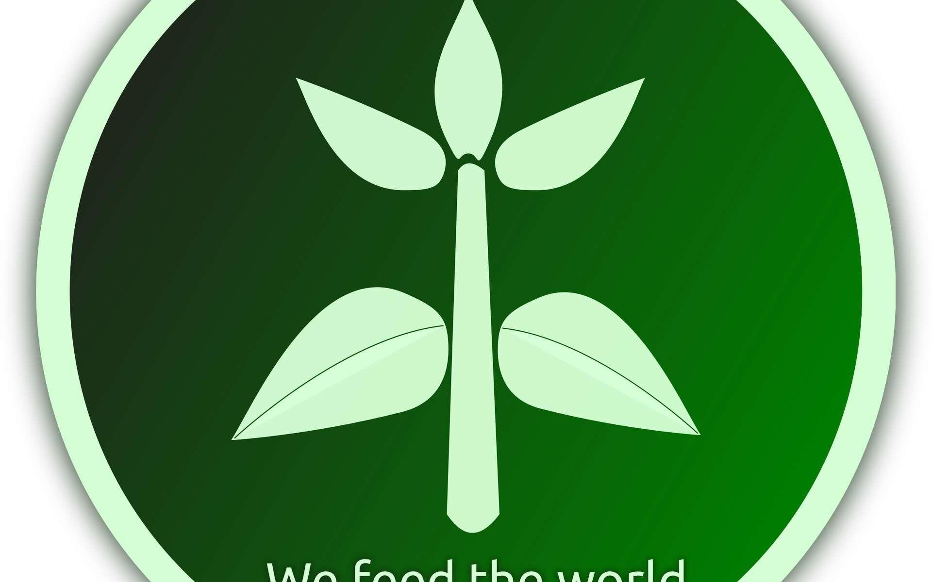 La disponibilité alimentaire, quant à elle, continue d'augmenter pour répondre aux besoins de la population mondiale.